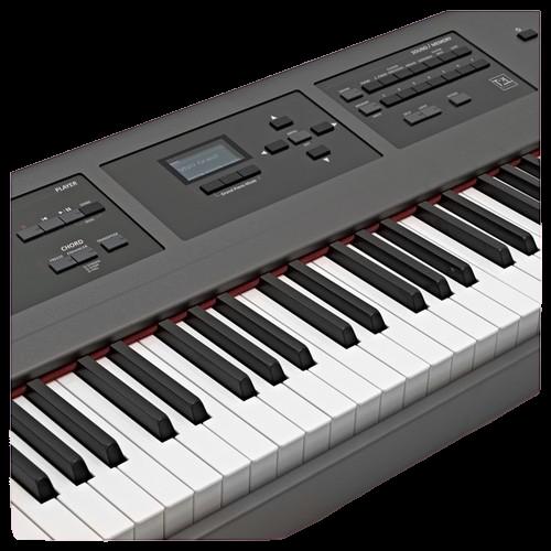 פסנתר חשמלי Dexibell VIVO P7